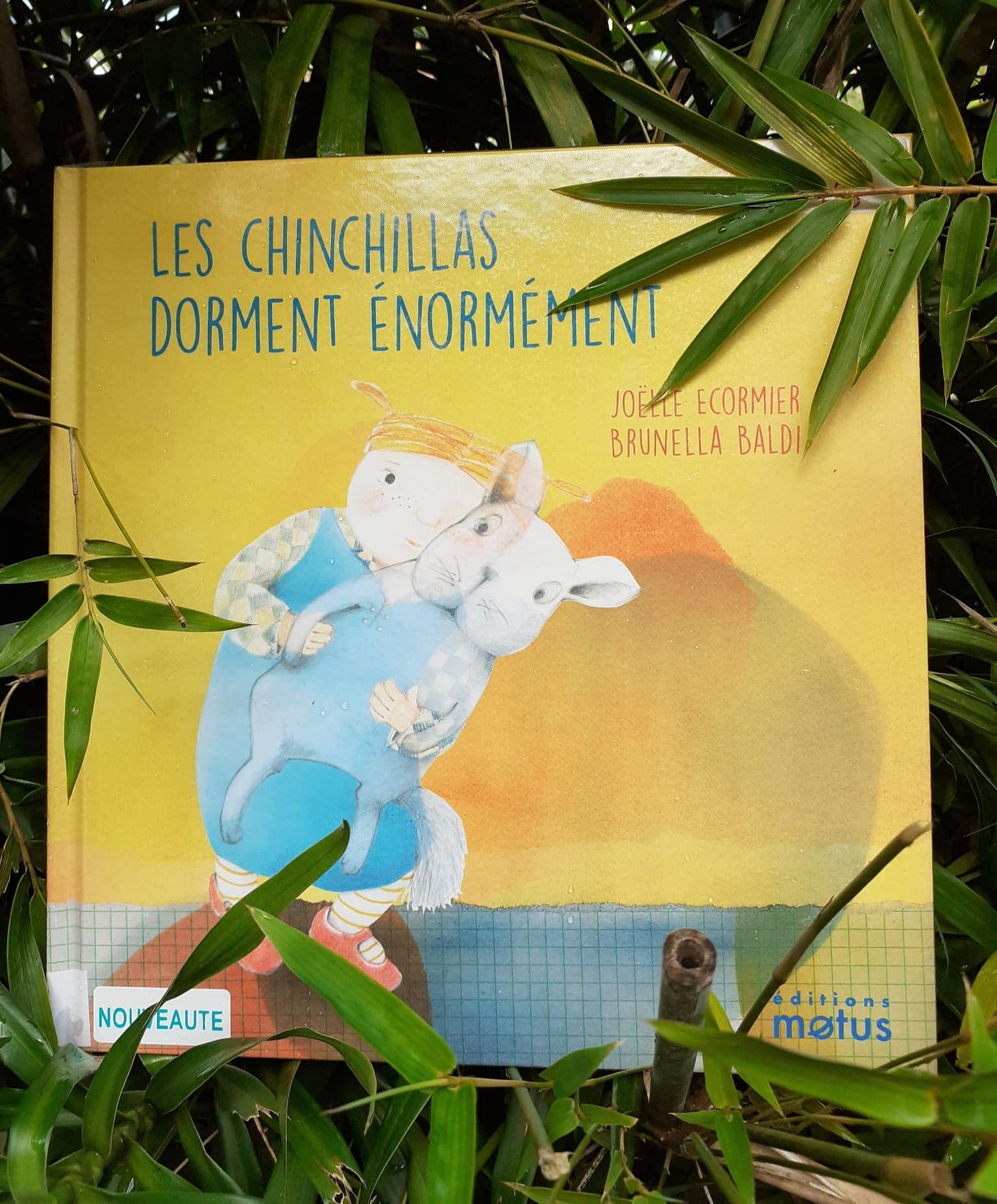 Les chinchillas dorment énormément :: Joëlle Ecormier et Brunella Baldi